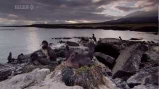 Galpagos: Las Islas Que Cambiaron El Mundo - Islands That Changed The World 2/3 HD [15 Subtitles]